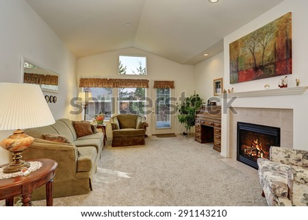 Nicely decorated living room with carpet, and a fireplace. - stock photo