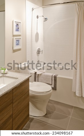 Nicely decorated modern washroom, bathroom with the toilet sit, sink, some plants in the vase on the shelf. Interior design. Vertical.
