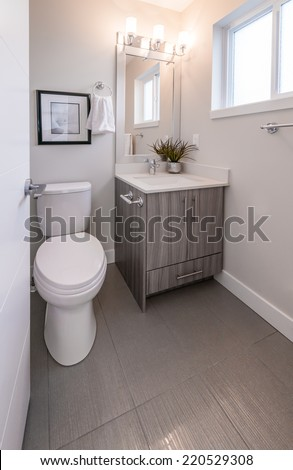 Nicely decorated modern washroom, bathroom, with the toilet sit, sink, some plants on the shelf. Interior design. - stock photo
