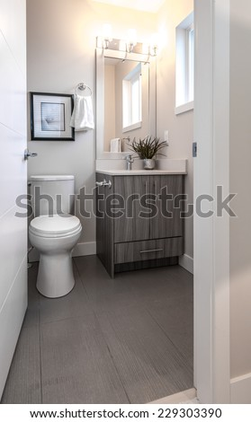 Nicely decorated modern washroom, bathroom with the toilet sit, sink, some plants on the shelf. Interior design. Vertical. - stock photo