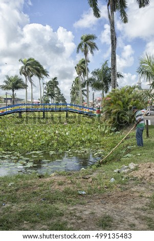 NICKERIE,SURINAME-MARCH 23,2016:Man cleaning a canal in Nickerie from water lily plants
