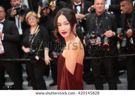Nicole Warne attends the 'Slack Bay (Ma Loute)' premiere during the 69th annual Cannes Film Festival at the Palais des Festivals on May 13, 2016 in Cannes, France.  - stock photo