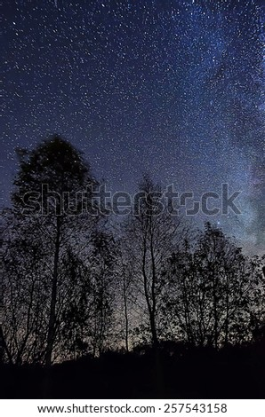 Night blue sky with lot of shiny stars, many trees are at front - stock photo