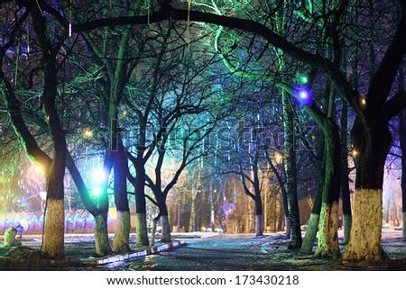 Night city park lights - stock photo
