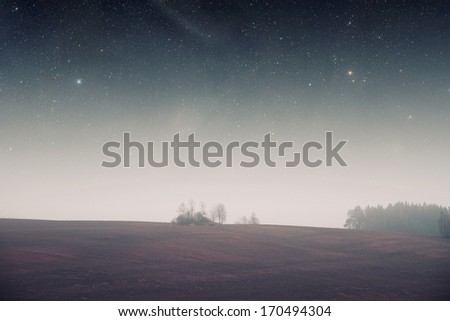 night field forest . Elements of this image furnished by NASA - stock photo