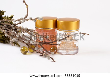 Night humidifying ginseng a cream against a willow branch - stock photo