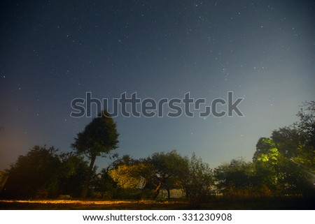 night in the village. stars shine in the sky above the trees - stock photo