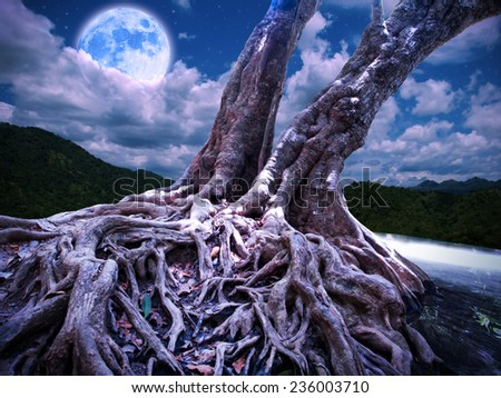 night light fantasy forest scene illustration  - stock photo