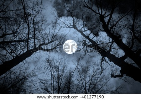 Night mysterious landscape in cold tones - silhouettes of the bare tree branches against the full moon and dramatic cloudy night sky - stock photo