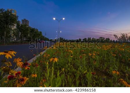 Night Park - stock photo