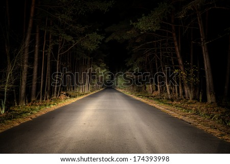 Night Road on dark forest. - stock photo