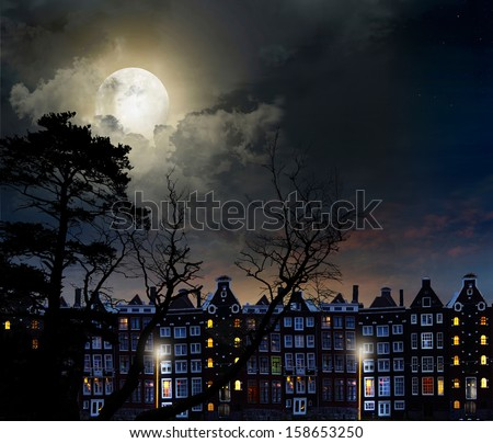 Night scene in the moonlight, in the lights of the city - stock photo
