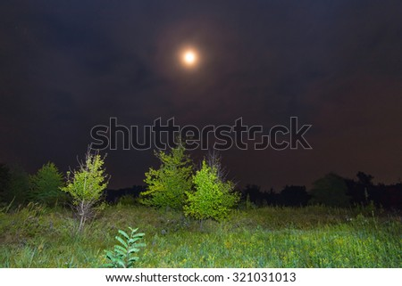 night scene moon above fields