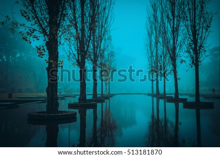 Night scene with trees and pond in Parma, Emilia-Romagna, Italy.