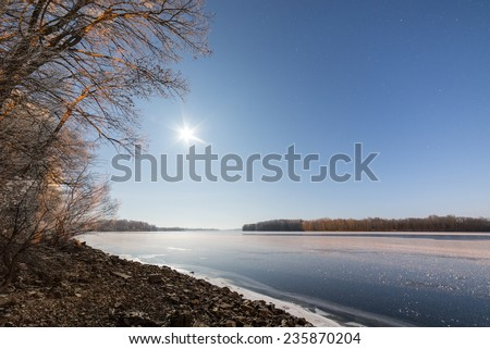 night sky with stars in the winter night with trees and frost - stock photo