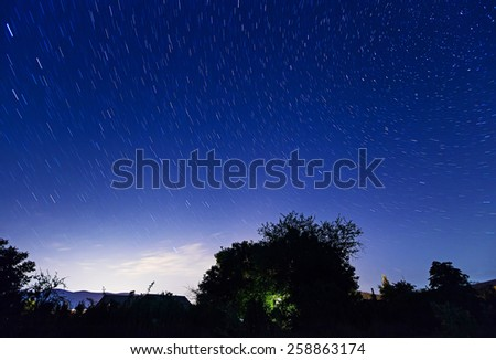 Night starry sky with trees silhouette - stock photo