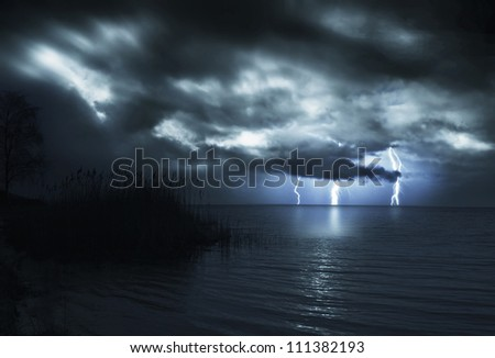 night storm/reeds at midnight/storm over the gulf in the night