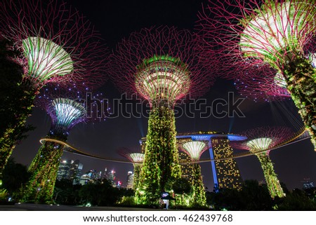 Night View Of The Supertree Grove In The Garden By The Bay With Marina Bay  Sands