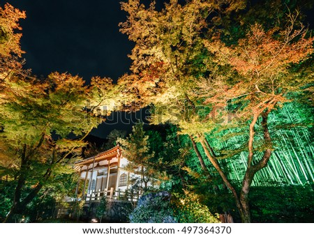 Night View With Maple in Hogonin, Kyoto, Japan
