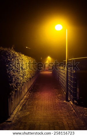Night walk in a foggy city park alley illuminated by street lights (diffused, toned). Dreamy cityscape.