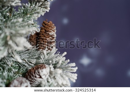 Night winter snowy forest  - stock photo