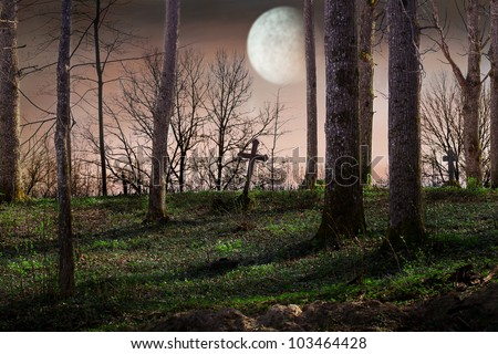 Night with a full moon over the cemetery - stock photo