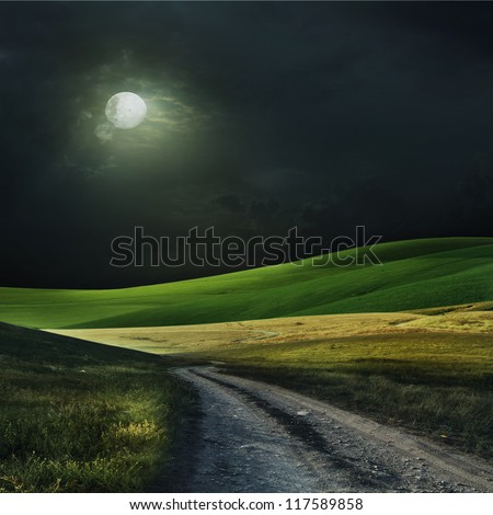 Night with the moon over a field. Also it is expensive - stock photo