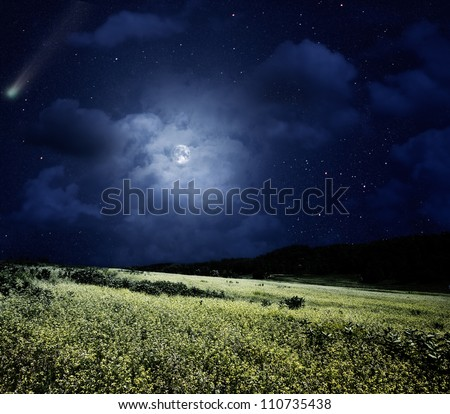Nightly meadow. Natural summer backgrounds with comet and full moon - stock photo
