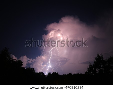 Nighttime lightning bolts in Florida