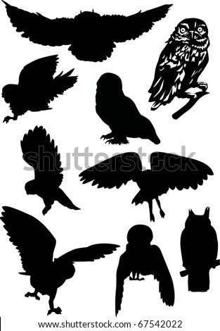 nine owls silhouettes isolated on white background
