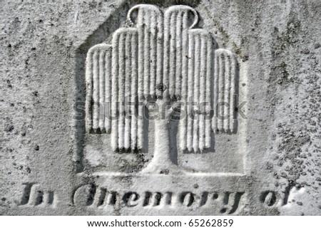 Nineteenth century gravestone detail weeping willow - stock photo