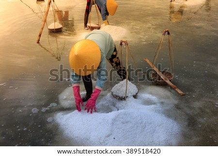 Ninh Thuan Province, Vietnam - February 28, 2016 : woman is working on salt field at dawn. Salt field Hon Khoi in Nha Trang, Viet Nam. Workers transporting salt from the fields Hon Khoi, Viet Nam.