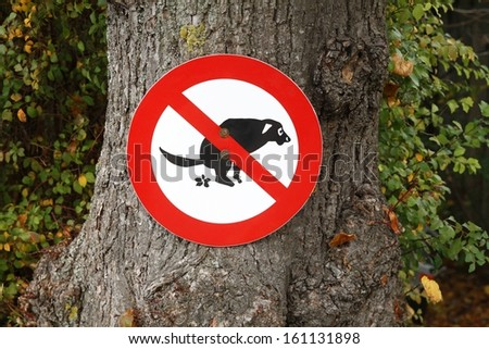 No dogs - stock photo