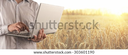No face person Businessman hold laptop computer Botanic scientist man wear shirt Copy space for inscription Experienced agronomist examining wheat grain in field Takes readings Agribusiness - stock photo