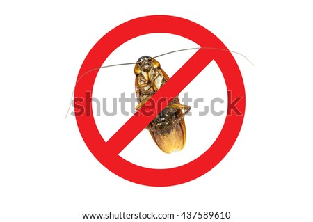 No More Cockroach icon ,Sign and dead of a cockroach,Isolated on a white background - stock photo