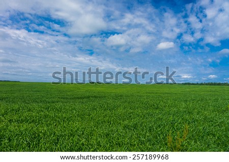Nobody Outside Plain Nature  - stock photo