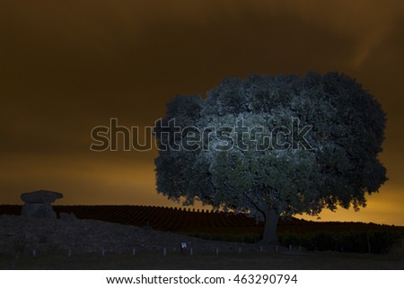 nocturnal view of La Chabola de la Hechicera dolmen in Villar de Alava (Spain)
