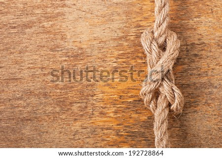 node on the background of an old tree - stock photo
