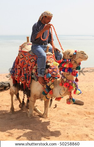 Nomad on his camel - Egypt