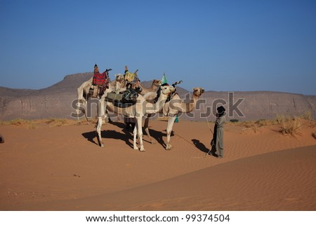 Nomads in the Sahara