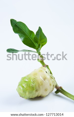 Noni and leaves