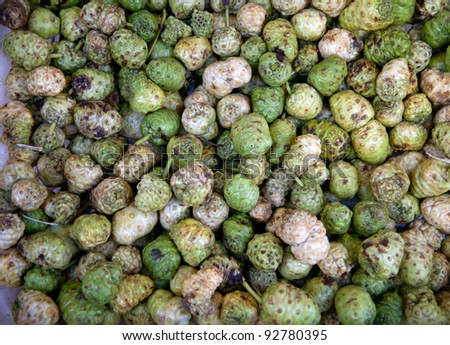 Noni fruits of nature form - stock photo
