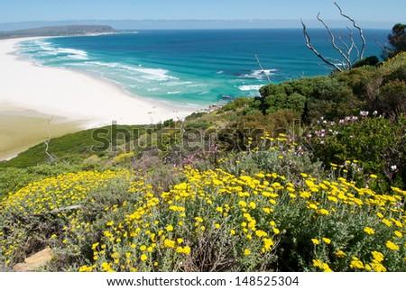 Noordhoek Spring View Cape Town - stock photo