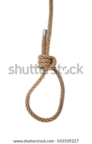 Noose of rope on a white background.