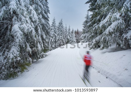 Nordic skier in beautiful white winter nature