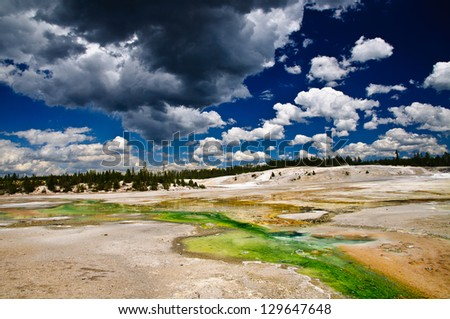 Norris Geyser Basin, Yellowstone National Park, Wyoming. Showing green, yellow and orange algae living in the warm alkali water of the stream - stock photo