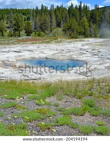 norris hot pool in the upper geyser  basin in yellowstone national park, wyoming         - stock photo