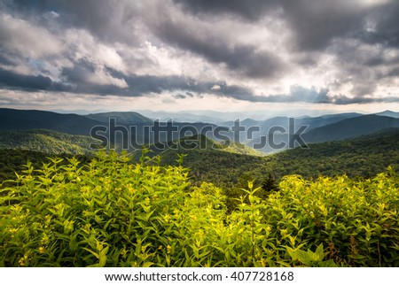 North Carolina Blue Ridge Parkway Scenic Nature Appalachian Mountain Landscape with summer flowers and sun rays south of Asheville NC - stock photo