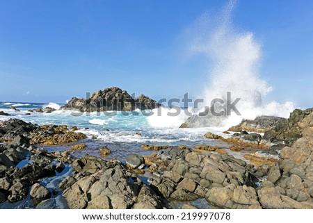 North coast from Aruba island - stock photo