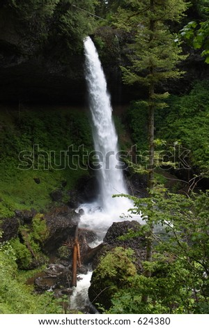 North Falls at Silver Falls State Park
